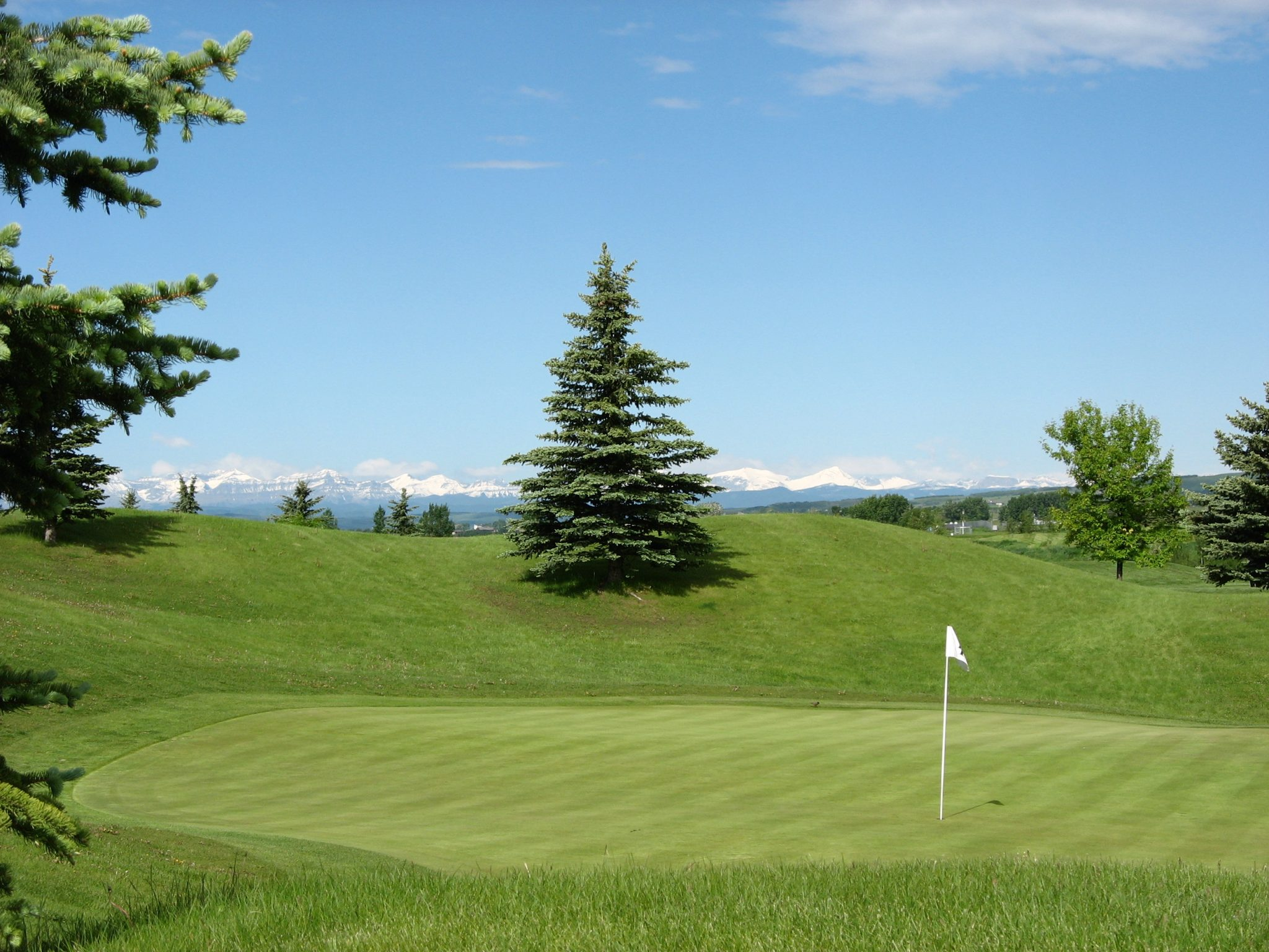 darcy ranch golf club booking policies